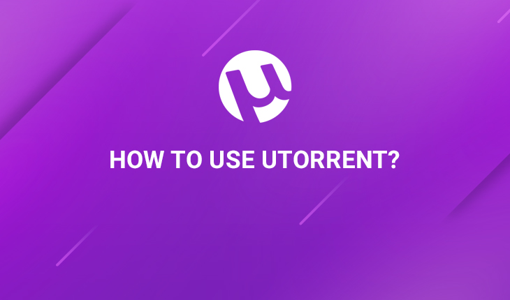 How to Use uTorrent (Guide With Picture)